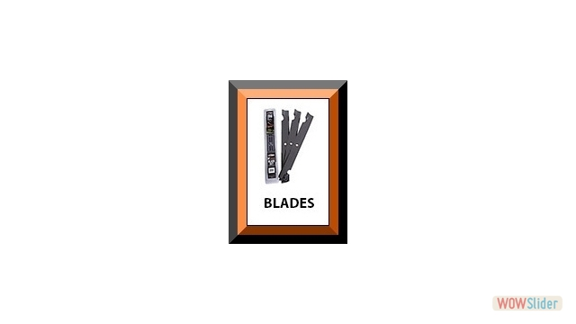 CLICK HERE FOR THE BLADES